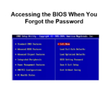 Accessing the BIOS When You Forgot the Password